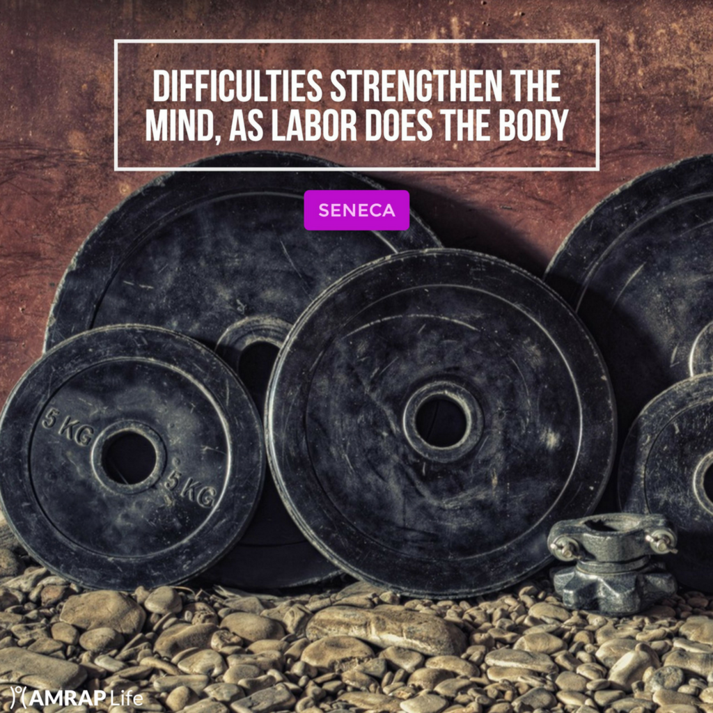 Difficulties strengthen the mind, as labor does the body